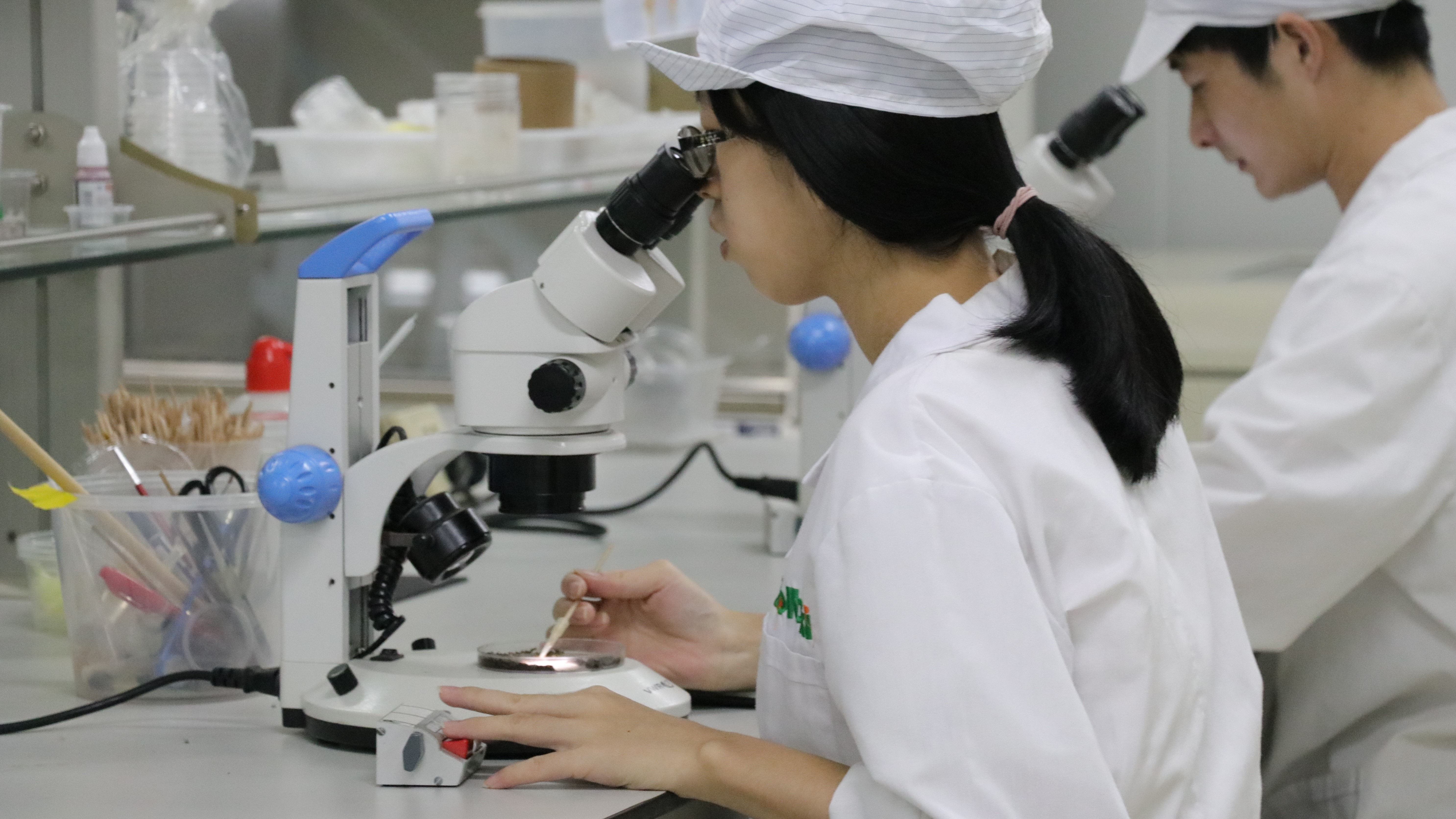 http://ubeat.com.cuhk.edu.hk/wp-content/uploads/2018/137_mosquito_9-1.jpg