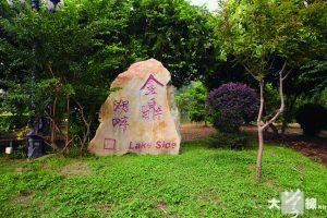 劉愛嬌昔日的農田,部分如今已成為屋苑「金鼎湖畔」的水池。 (艾博瑜攝)